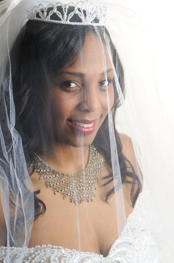 Beautiful Bride in a Veil